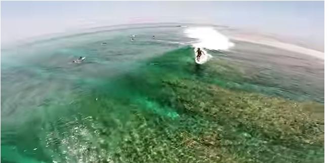 空撮モルティブサーフィン
