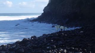 【動画】ジョーズ(JAWS)のポイントにての大波に乗りに行くときと終わった後の様子
