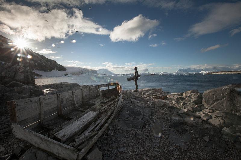 【画像】Red Bullが送る最大の捕食者でフリーダイビング、モルティブ・南極3