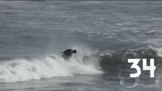 【動画】Cristobal De Col(クリストバル・デ・コル)のギネス記録獲得、2分間で34回のターンで波をつなぐ