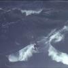 【動画】オーストラリアのタスマニアのサーフスポット、シップスターン・ブラフでのサーフセッション