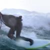 【動画】スーツ姿でキレキレのサーフィン!QUIKSILVERのウエットスーツ素材のスーツのCM