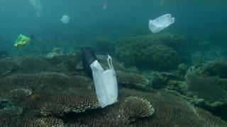 【動画】海を汚してしまう廃棄物(プラスチック)について考えさせられるムービー