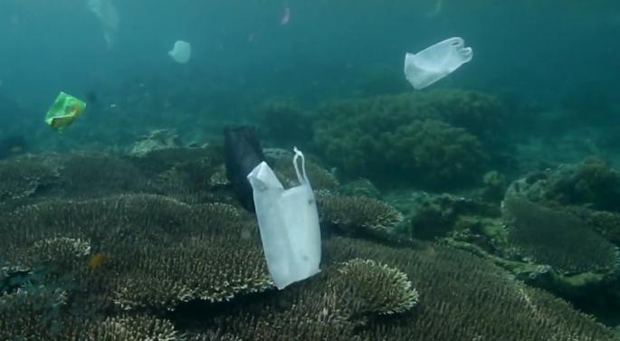 海を汚してしまう廃棄物(プラスチック)について考えさせられるムービー