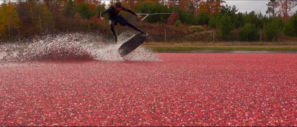 紅く染まるクランベリー畑でウェイクボードで滑走!
