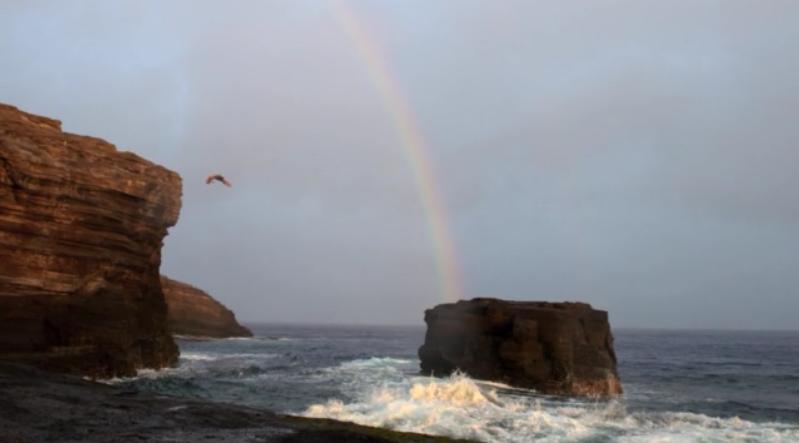 ハワイのマウイ島でサーフィンを焦点としたムービー