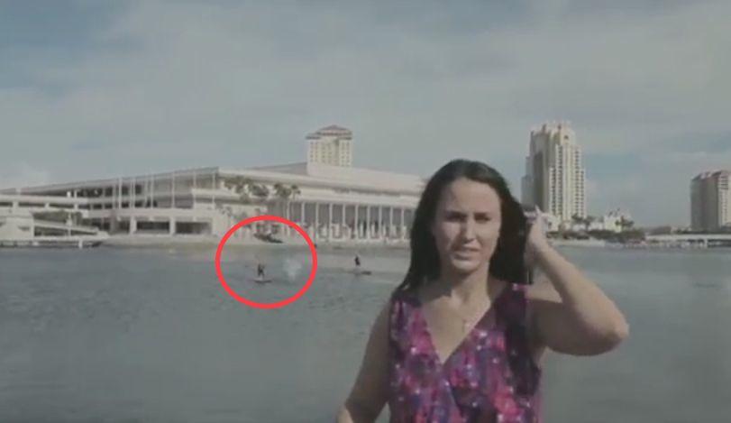 メキシコ湾側のタンパ湾でびっくりするハプニング!