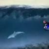 【動画】合成?イルカと夢の様なタンデムランディング