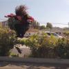 【動画】トリッキーなスケートボーダーRichie・Jackson(リッチー・ジャクソン)
