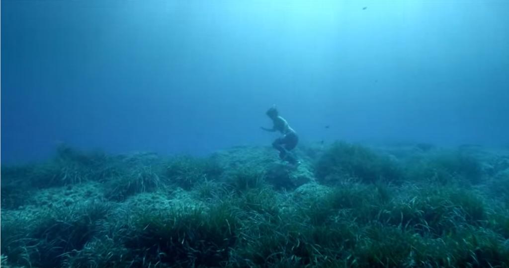 国際海洋フィルムOCEAN FILM TOUR