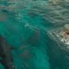 【動画】岸はすぐそこ、海にはサメが・・・・美女サーファーの運命は??