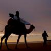 【動画】3人のサーファーがラクダに乗ってサーフトリップinモロッコ