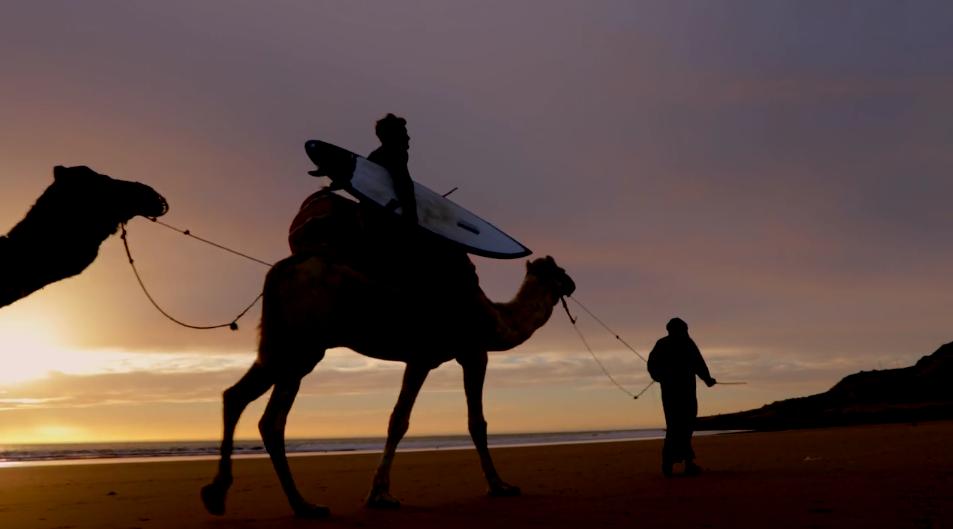 3人のサーファーがラクダに乗ってサーフトリップinモロッコ