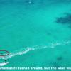 【動画】危うく大惨事カイトサーフィン中にホオジロザメが出現