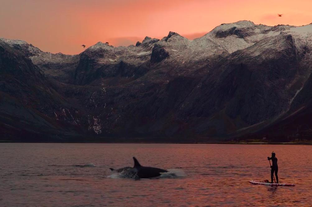 SUPカイトサーフィンありはるか北からの魅力的な画像