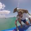 【動画】SUPで愛犬と一緒にサーフィン