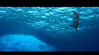 【動画】波の下はどうなっているのか?波の下を中心とした動画
