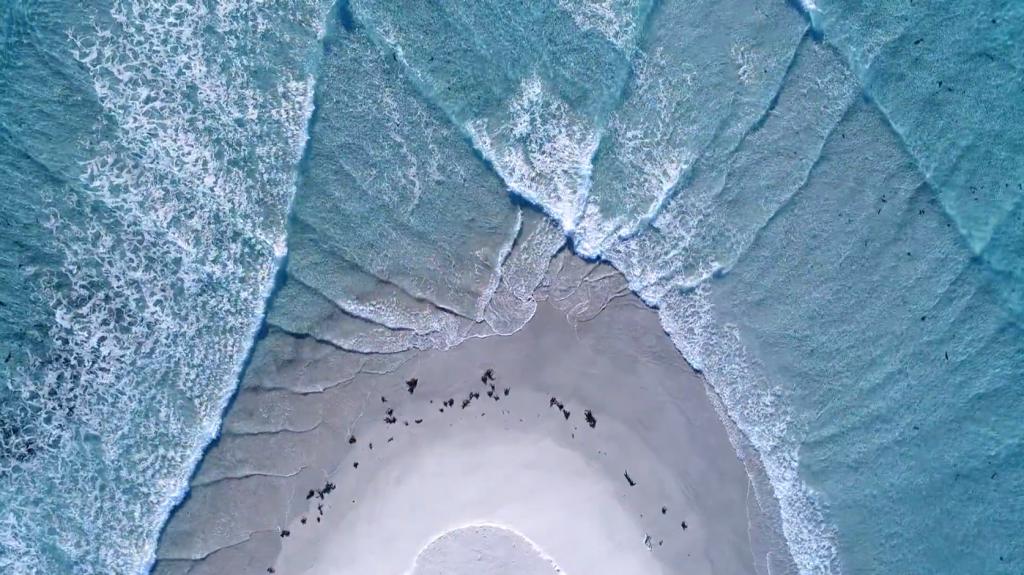 タスマニアの東海岸の4K空撮動画