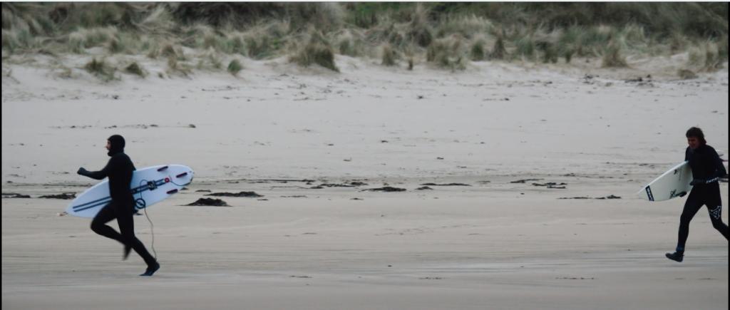 ニュージーランドの冬、サーフィン終わりに予期せぬ生き物が!